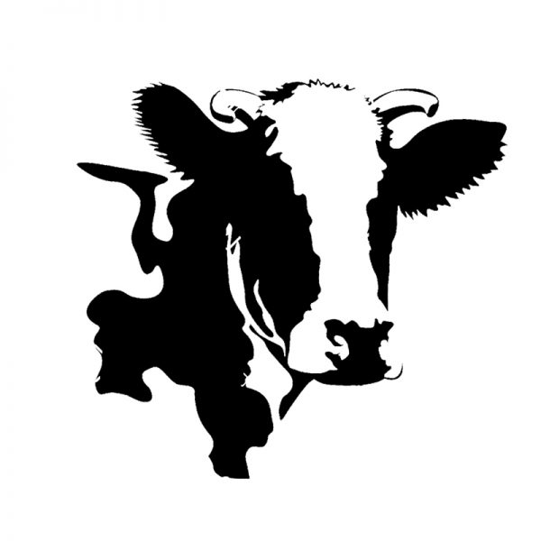 ۱۹۹۸۳۳۱۲-Vector-illustration-ofsadasdasd-a-cow-black-and-white-Stock-Vector-cow-head-cartoon-600x600